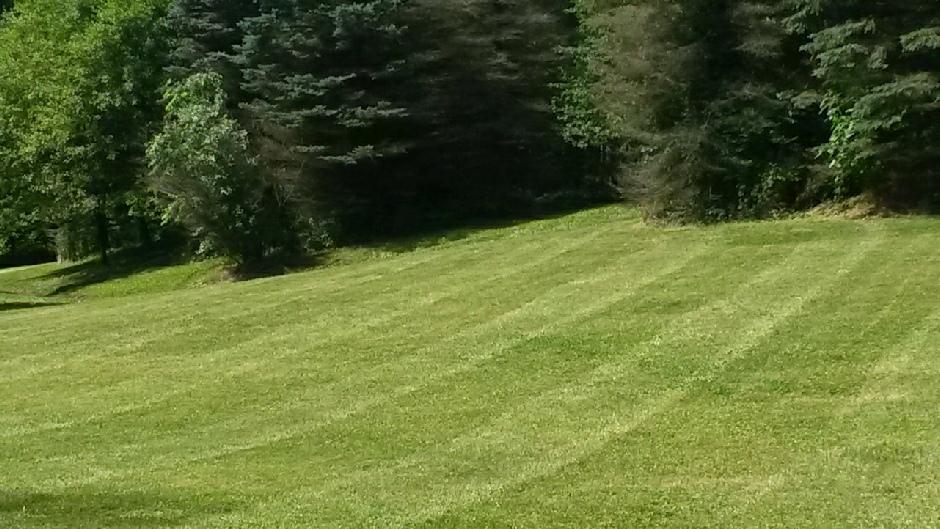 nice striped lawn ohio